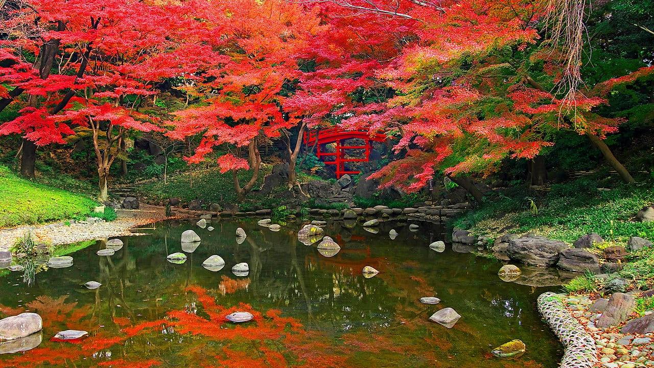Koishikawa Korakuen Garten Tokio